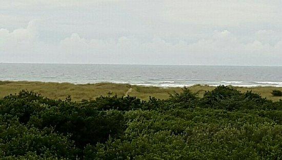 Ocean Shores, WA: 20160719_150132_large.jpg