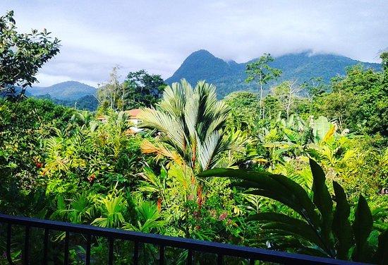 Casa Luna Hotel & Spa: 2nd floor balcony view