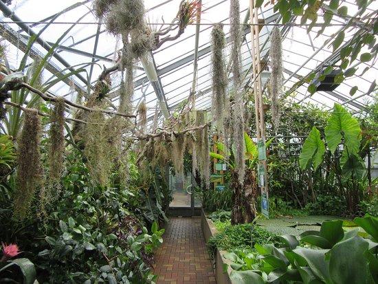 Jardin Botanique Nancy - Picture of Jardin Botanique Jean-Marie Pelt ...