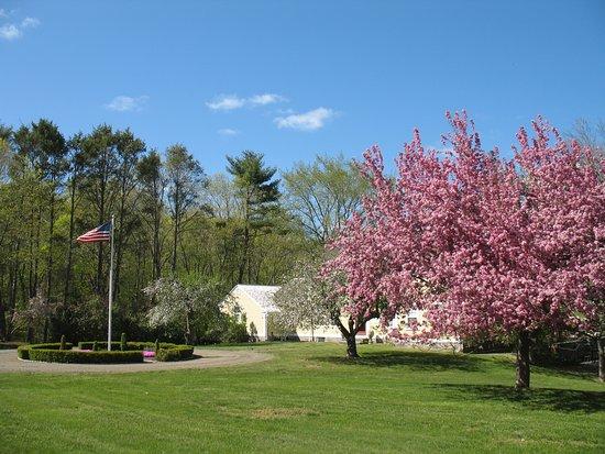 Haddam, Κονέκτικατ: Nehemiah Brainerd House in Spring