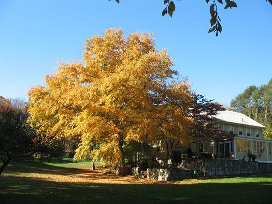 Haddam, CT: Nehemiah Brainerd House in Fall