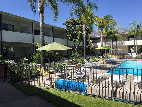 Poolomradet Picture Of Lemon Tree Inn Santa Barbara Tripadvisor