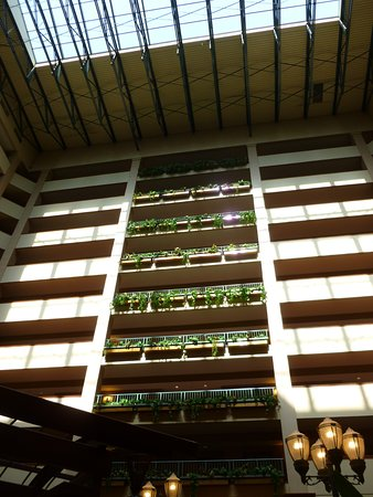Embassy Suites by Hilton North Charleston - Airport/Hotel & Convention Photo