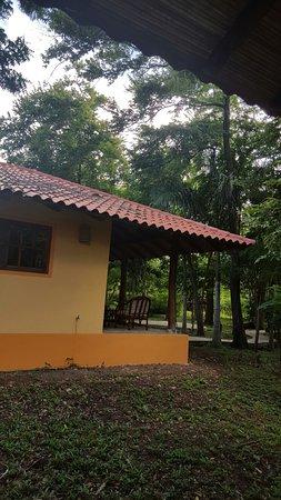 Mango Rosa Nicaragua: TA_IMG_20160807_080622_large.jpg