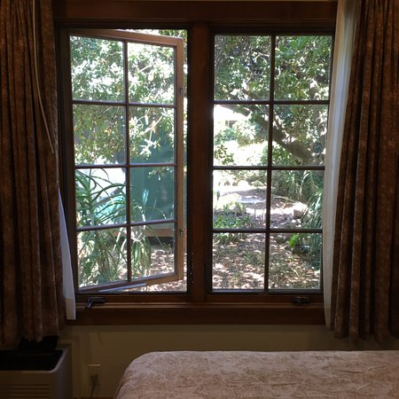 The Oaks at Ojai: this was from one of the smaller rooms...beautiful Oaks outside windows! So peaceful