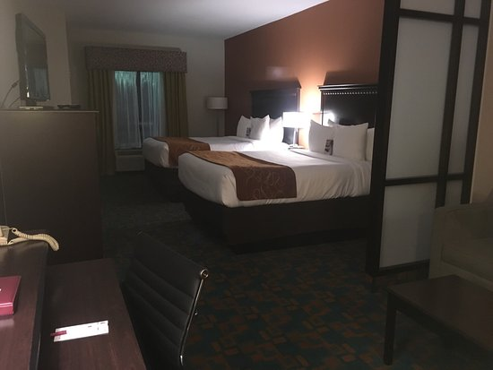 Comfort Suites Knoxville West-Farragut: photo1.jpg