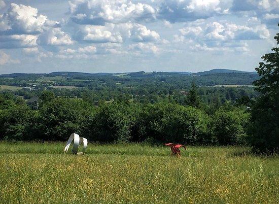 Cazenovia, Nowy Jork: Stone Quarry Hill Art Park