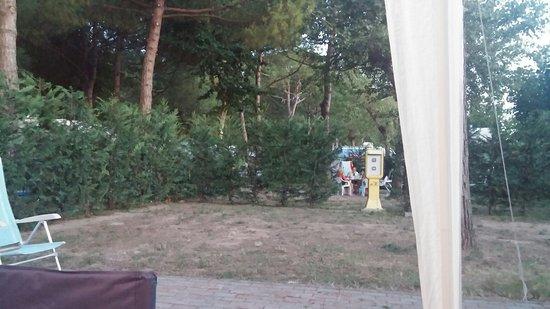 Cavallino-Treporti, Italy: TA_IMG_20160808_204555_large.jpg