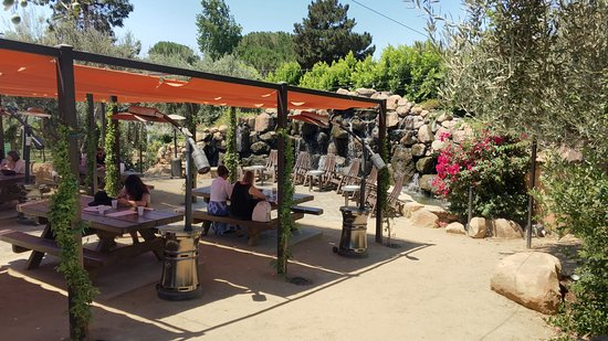 A great place to be and eat (Mediterraneo) - Picture of ...