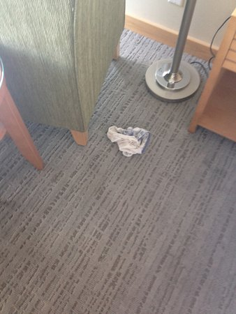 Вернон, Канада: The panties that our dog found under the chair in our room