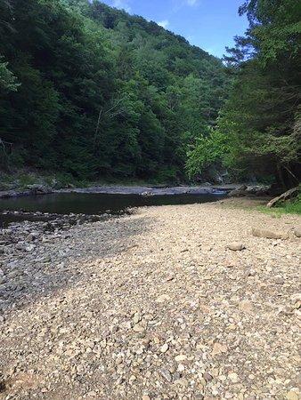 Forksville, Πενσυλβάνια: Loyalsock creek