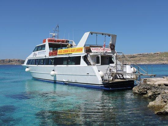 Luzzu Cruises
