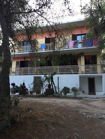 Delfini Hotel: photo0.jpg