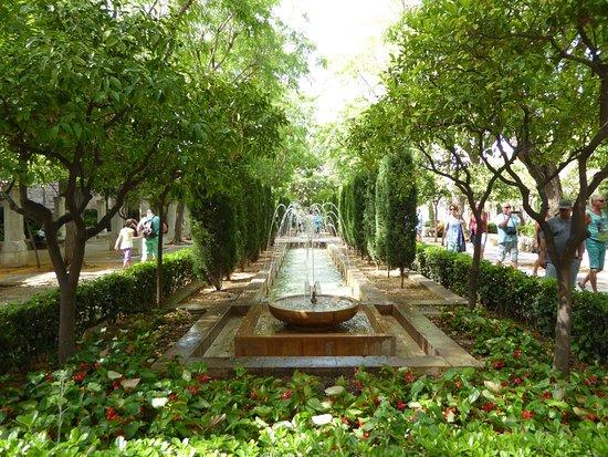 Hort del rei jardines palma de mallorca mei 2016 picture for Jardines mallorca