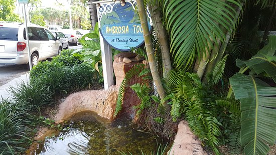 Ambrosia Key West Tropical Lodging : Street view