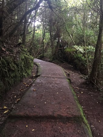 Poas Volcano National Park, Costa Rica: View of the volcano was amazing! We also enjoyed the walking path, we were able to see a lot of