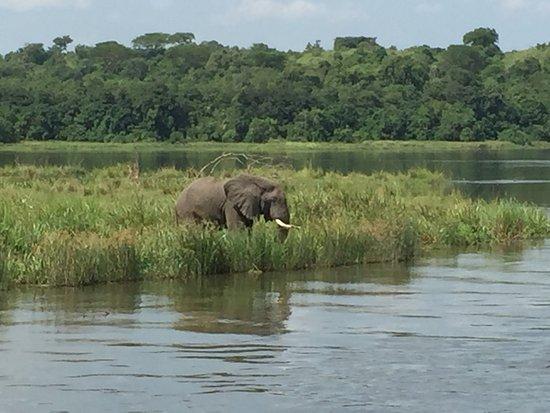 Visita obligada, exuberancia de agua y naturaleza