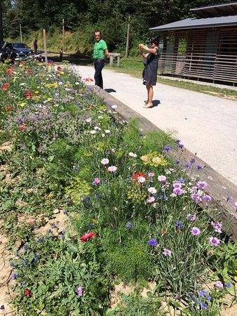 Saint-Théoffrey, France : l'accès fleuri
