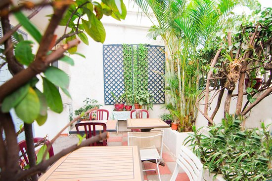 Hotel Phoenix: jardin