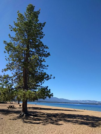 Shoreline of Tahoe
