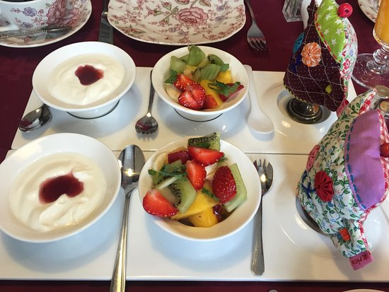 Saaxumhuizen, The Netherlands: Detail of breakfast with youghurt and fresh fruit salad