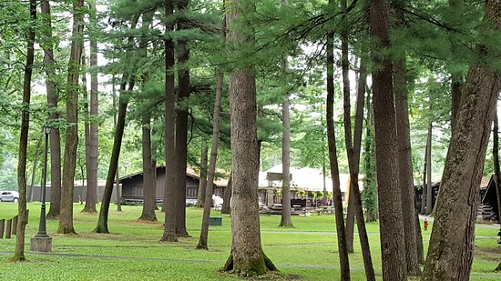 Mount Morris, IL: grounds at White Pines State Park