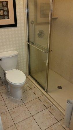 hilton garden inn cincinnati blue ash the bathroom was very clean - Hilton Garden Inn Blue Ash