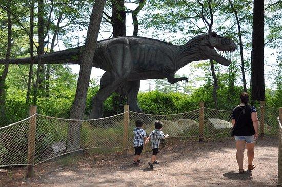 cff5ed24c1 Dino Land - Picture of Edaville Family Theme Park, Carver - TripAdvisor
