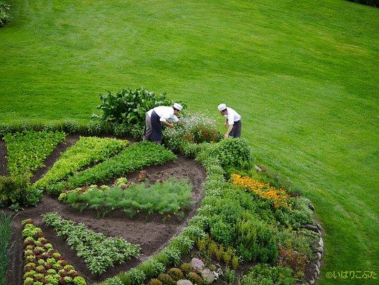 Bellevue Hotel & Spa: ホテルのお庭にあるハーブ畑