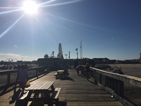 The pier picture of oceanic fishing pier ocean city for Maryland fishing piers