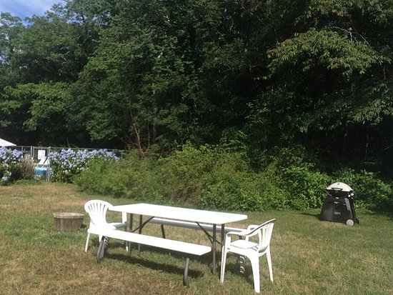 Olde Tavern Motel & Inn: gas grills, picnic table, sits aside pool area
