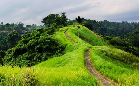 Bala Bali Tour