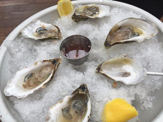 fresh Wellfleet oysters
