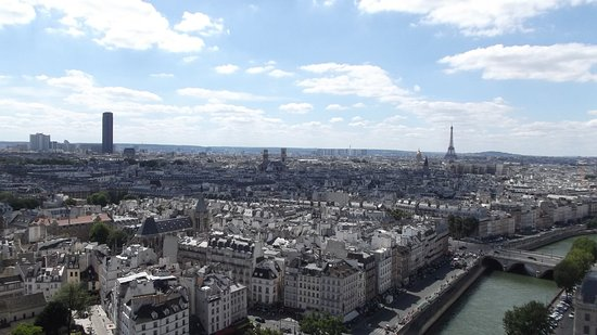 Île-de-France, Francia: Vista da torre Eiffel e rio Sena do alto da Catedral de Notredame.
