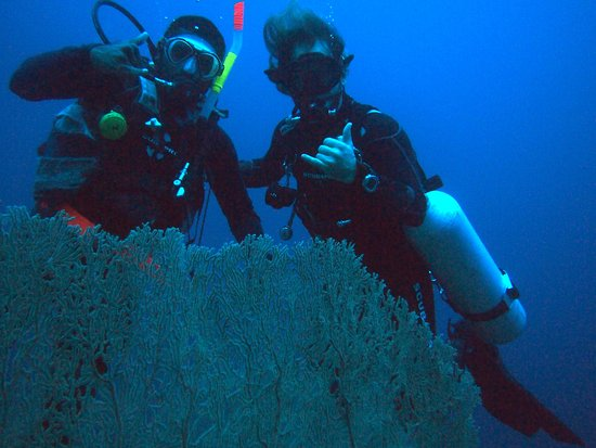 Hideaway Island Resort: Kevin and Kris (staff) at 40m fan corals