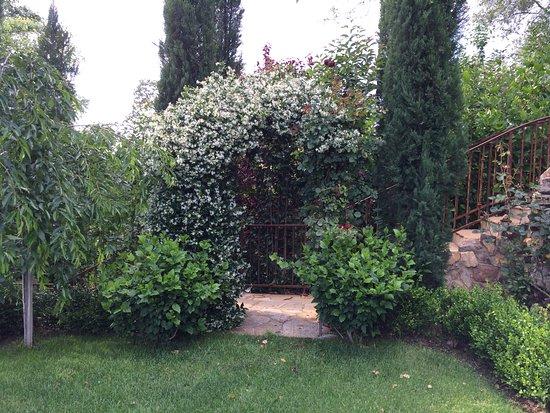 Barretta Gardens Inn Bed and Breakfast: Jasmine in abundance