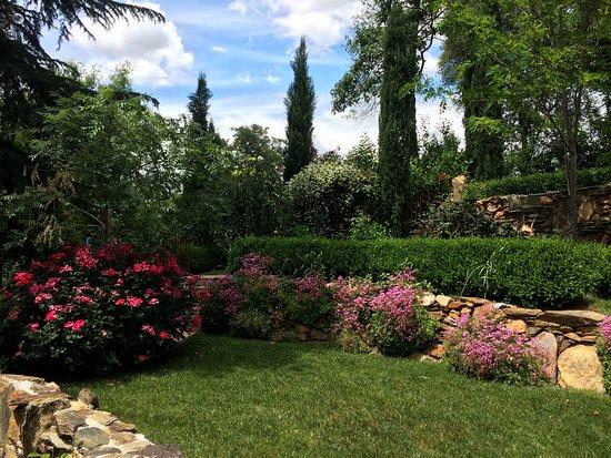 Barretta Gardens Inn Bed and Breakfast: Roses in full bloom