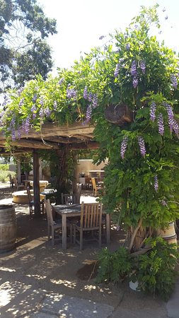 Santa Ynez Valley: 20160721_122403_large.jpg