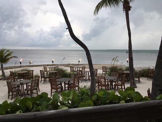 our table picture of the dining room at little palm a little bubbly with celebrations foto de the dining