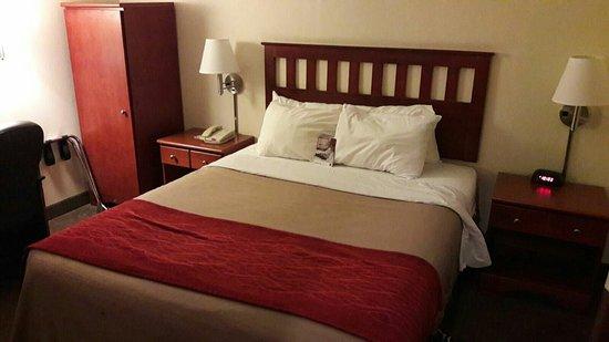 Comfort Inn: Comfort Inn