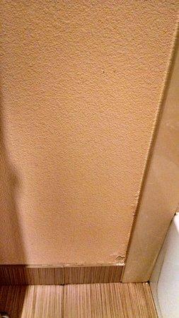 La Quinta Inn & Suites Lafayette : Wall damage in bathroom