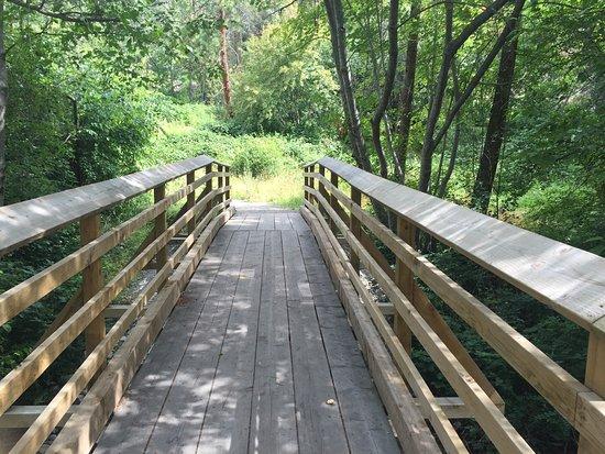 Beautiful scenery and the best walking trails in West Kelowna.