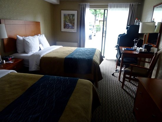 Comfort Inn: Our rather small, but well-furnished and comfortable updated room.