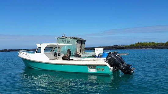 Isla Isabela, Galápagos Islands