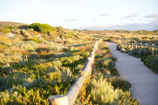 Prevelly, Australia: Limestone tracks take you along the beach to nearby cafe White Elephant