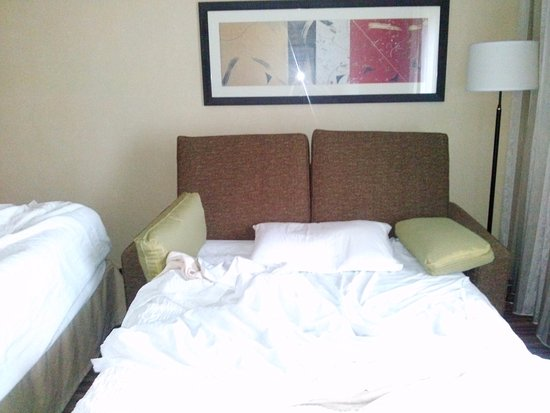 double fold out sofabed picture of courtyard seattle north rh tripadvisor com