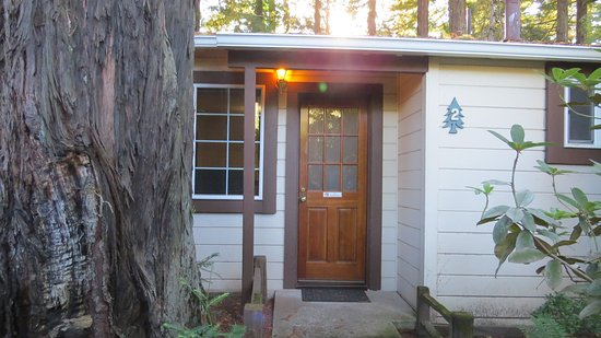 Miranda, Kalifornia: Nice cabin tucked off the Avenue, Big Redwoods right outside the door.