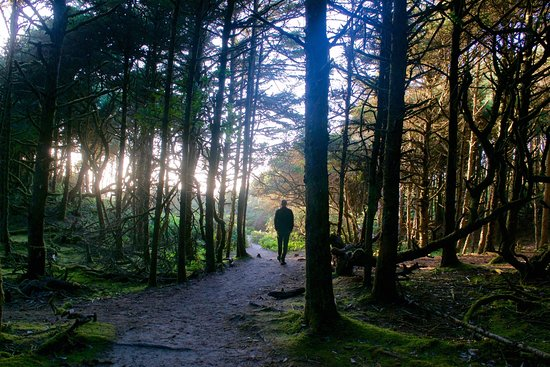 Florence, OR: Hobbit Trail