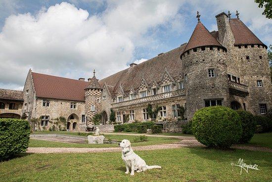 Vigneulles-Les-Hattonchatel, France : dog friendly