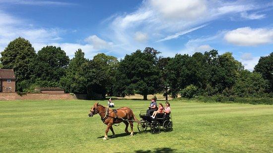 Grosvenor & Hilbert Park